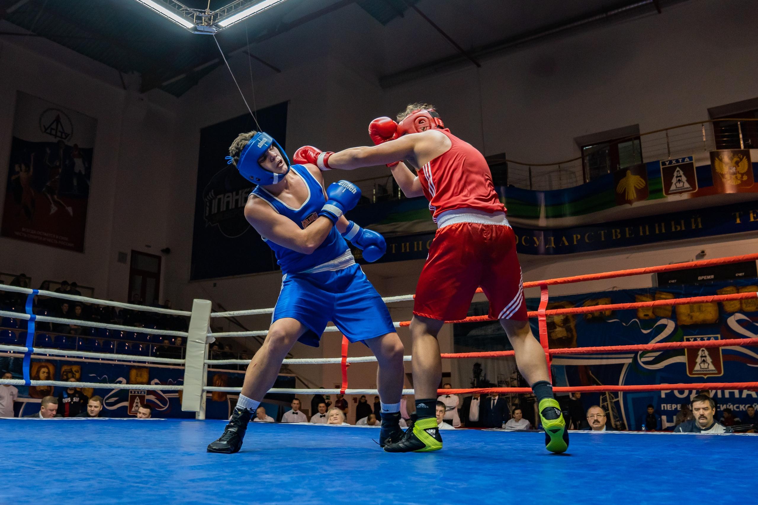 Фото с первенства СЗФО по боксу среди юниоров Ухта 2020_5