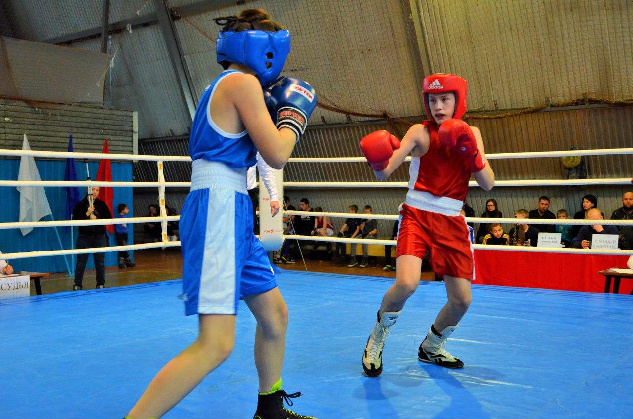Традиционный турнир по боксу, посвященный памяти Андрея Колыгина _1