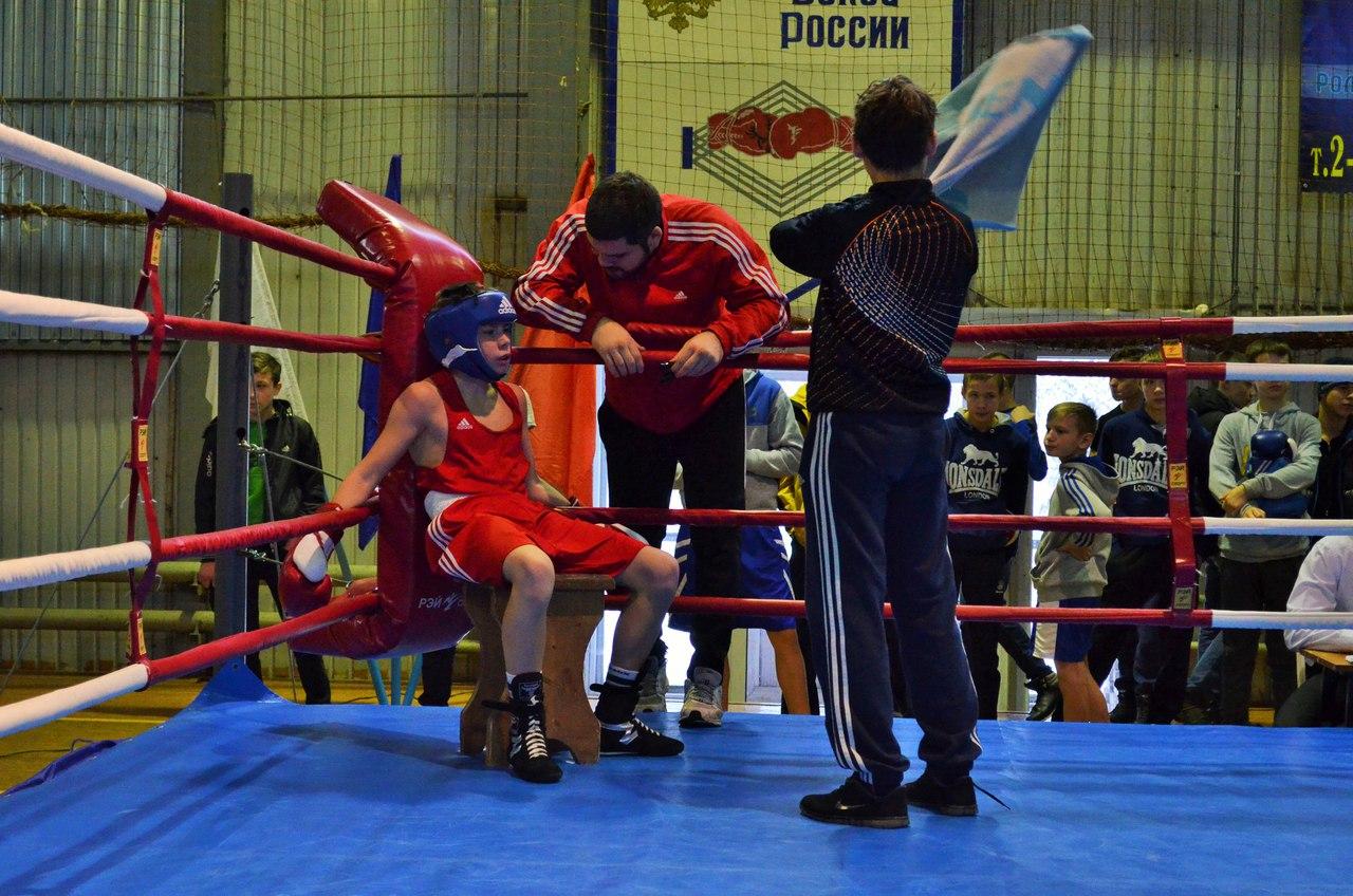 Традиционный турнир по боксу, посвященный памяти Андрея Колыгина _4