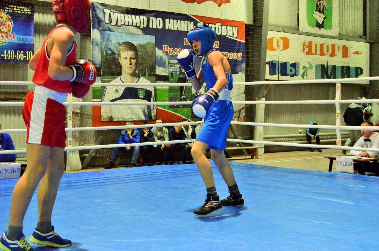 Традиционный турнир по боксу, посвященный памяти Андрея Колыгина _5