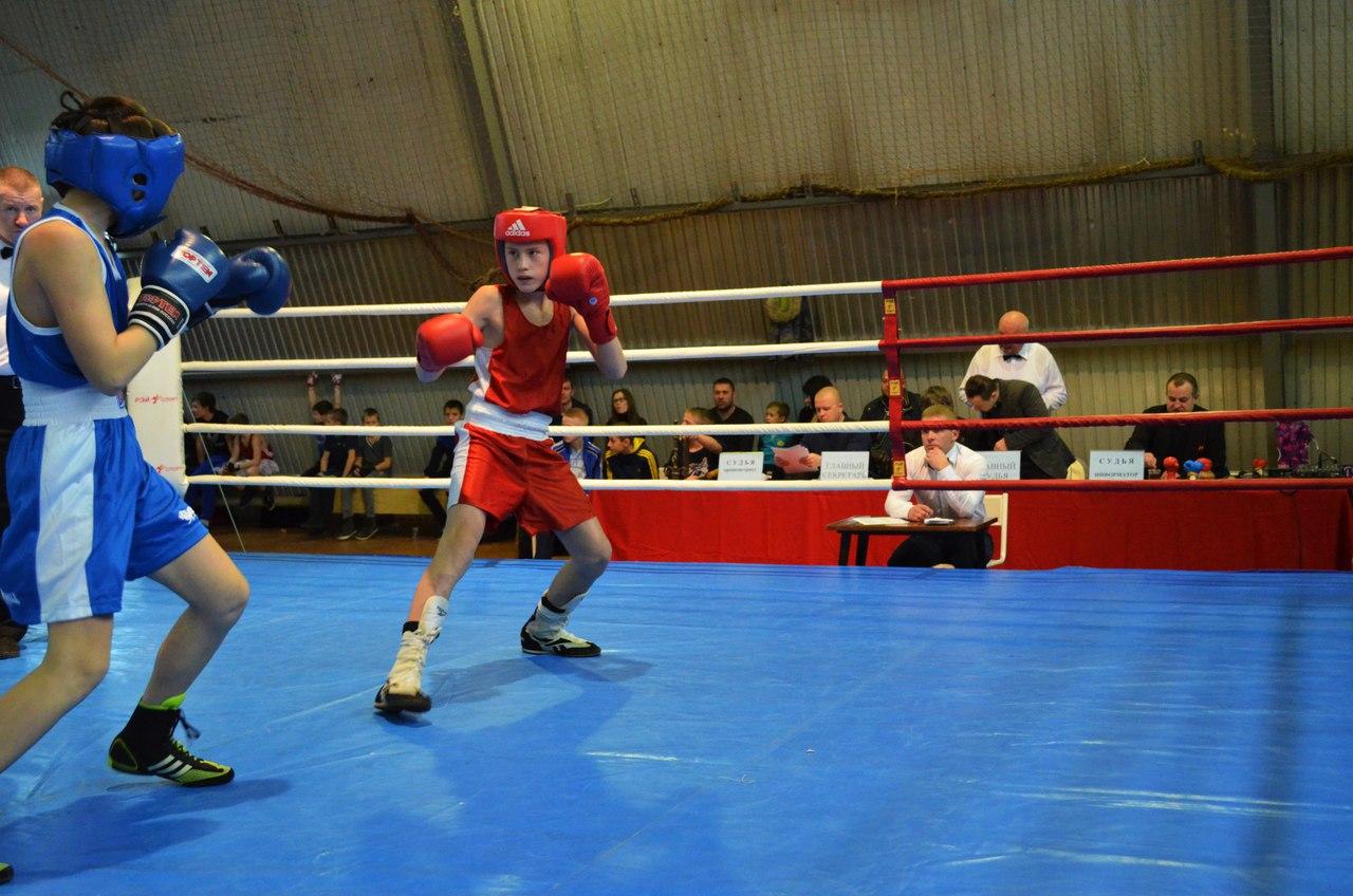 Традиционный турнир по боксу, посвященный памяти Андрея Колыгина _6