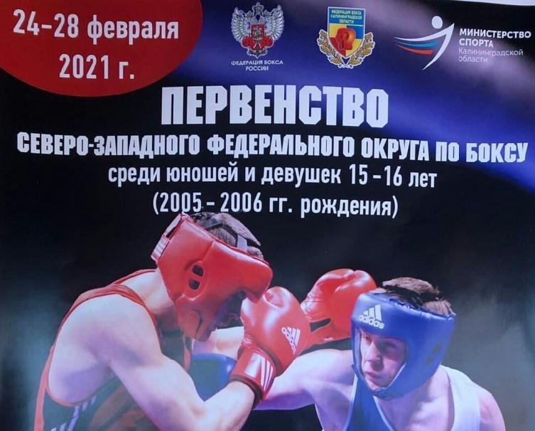 Погребной Иван вышел в финал первенства СЗФО по боксу среди старших юношей
